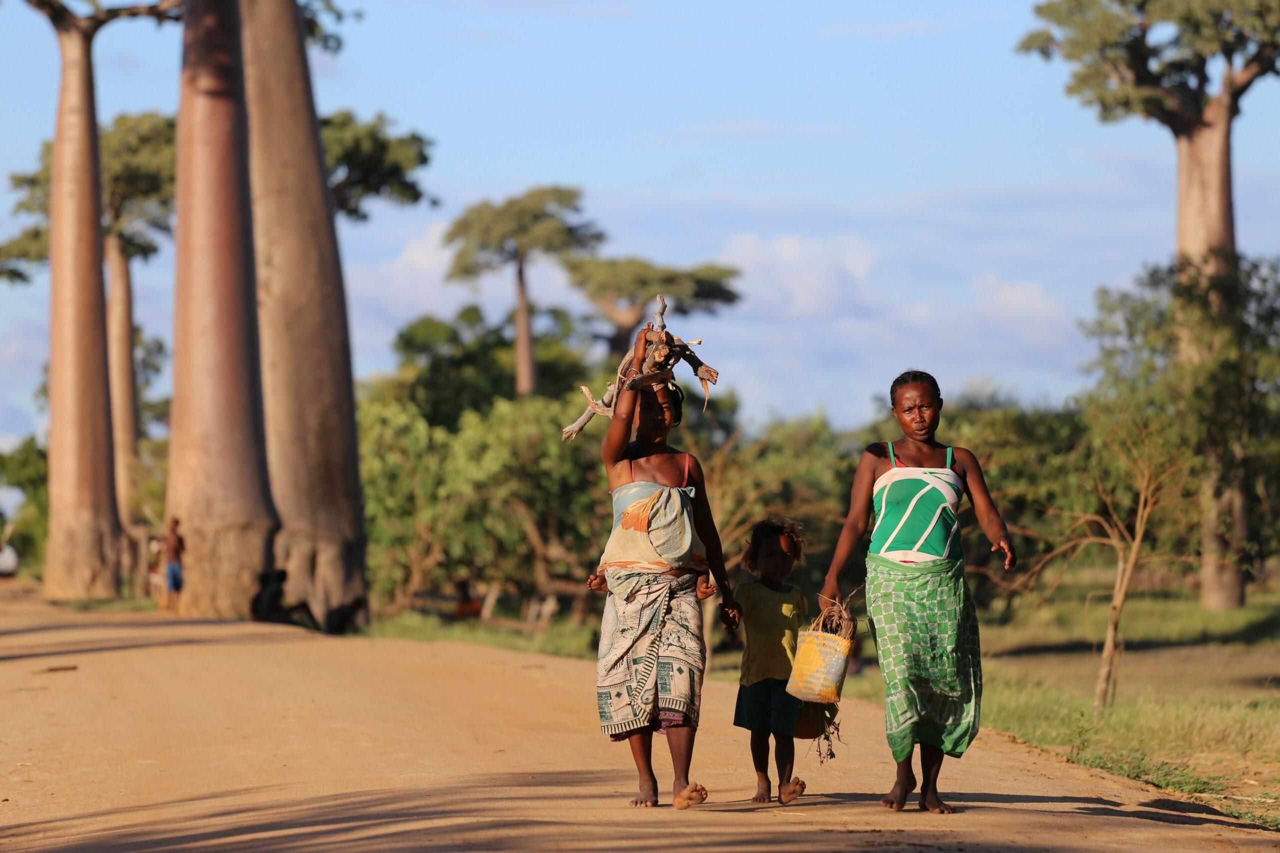 svält i afrika